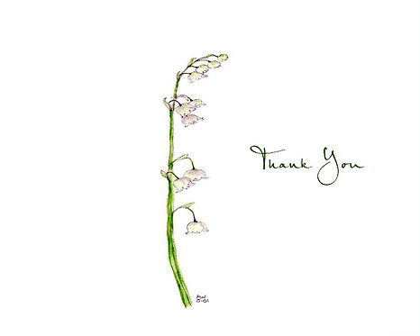 Lily of the Valley - Thank You