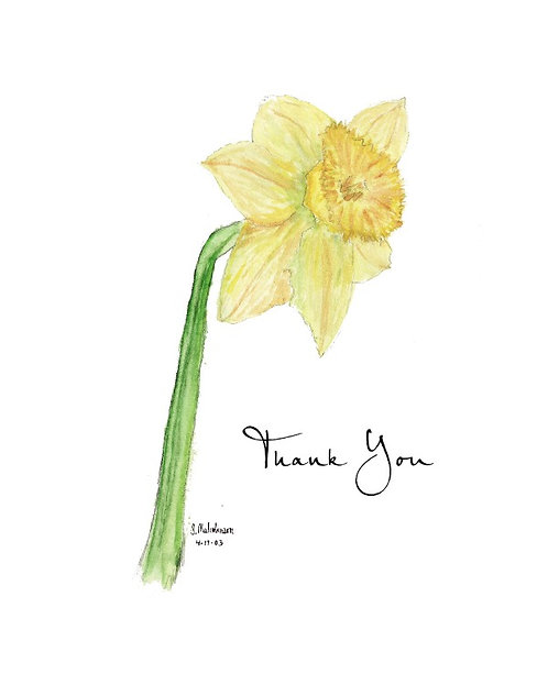 Daffodil - Thank You