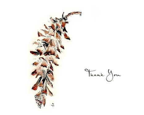 Pine Cone - Thank You
