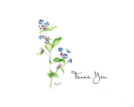 Prunella - Thank You