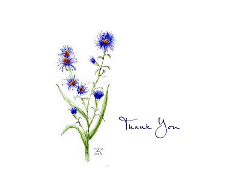 Aster - Thank You