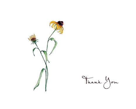 Black Eyed Susan - Thank You