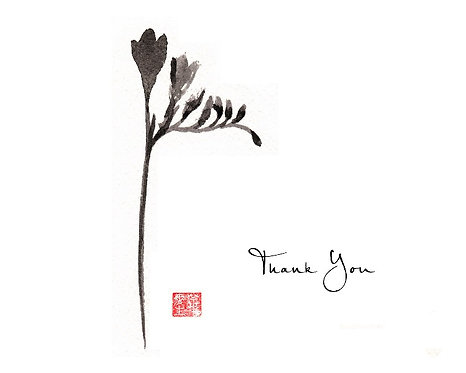 Freesia - Black - Thank You