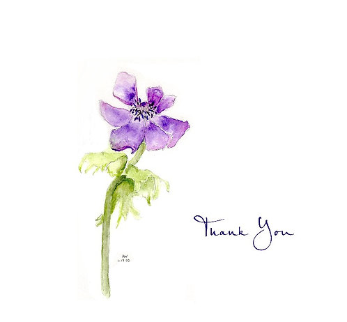 Purple Anemone - Thank You