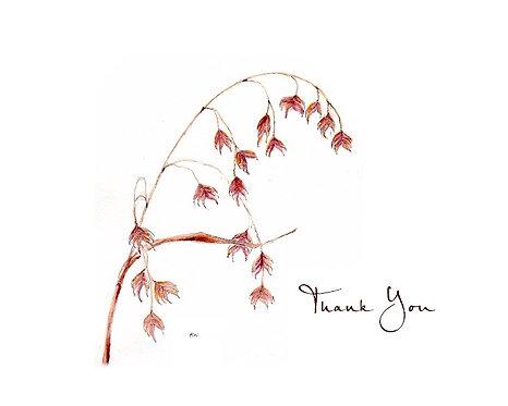 Oats - Thank You
