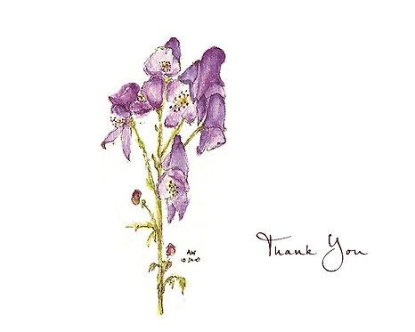 Monkshood - Thank You
