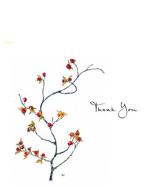 Bittersweet - Thank You