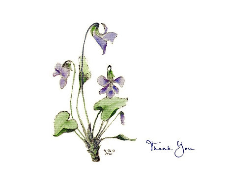 Violet - Thank You