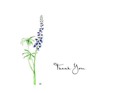 Lupine - Thank You