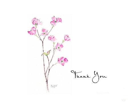 Dogwood - Thank You