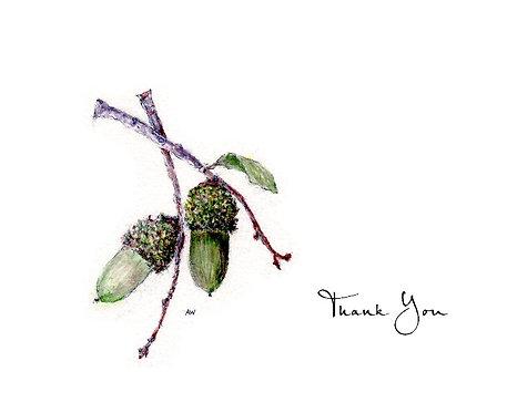 Acorns - Thank You