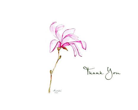 Magnolia - Thank You