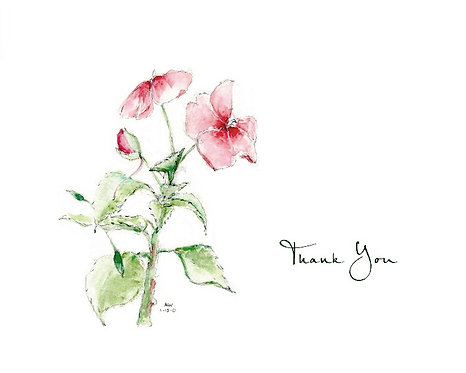 Impatiens - Thank You