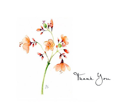 Bahama Tree - Thank You
