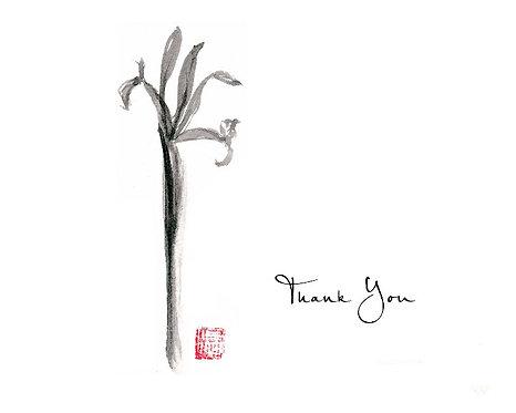 Iris - Black - Thank You
