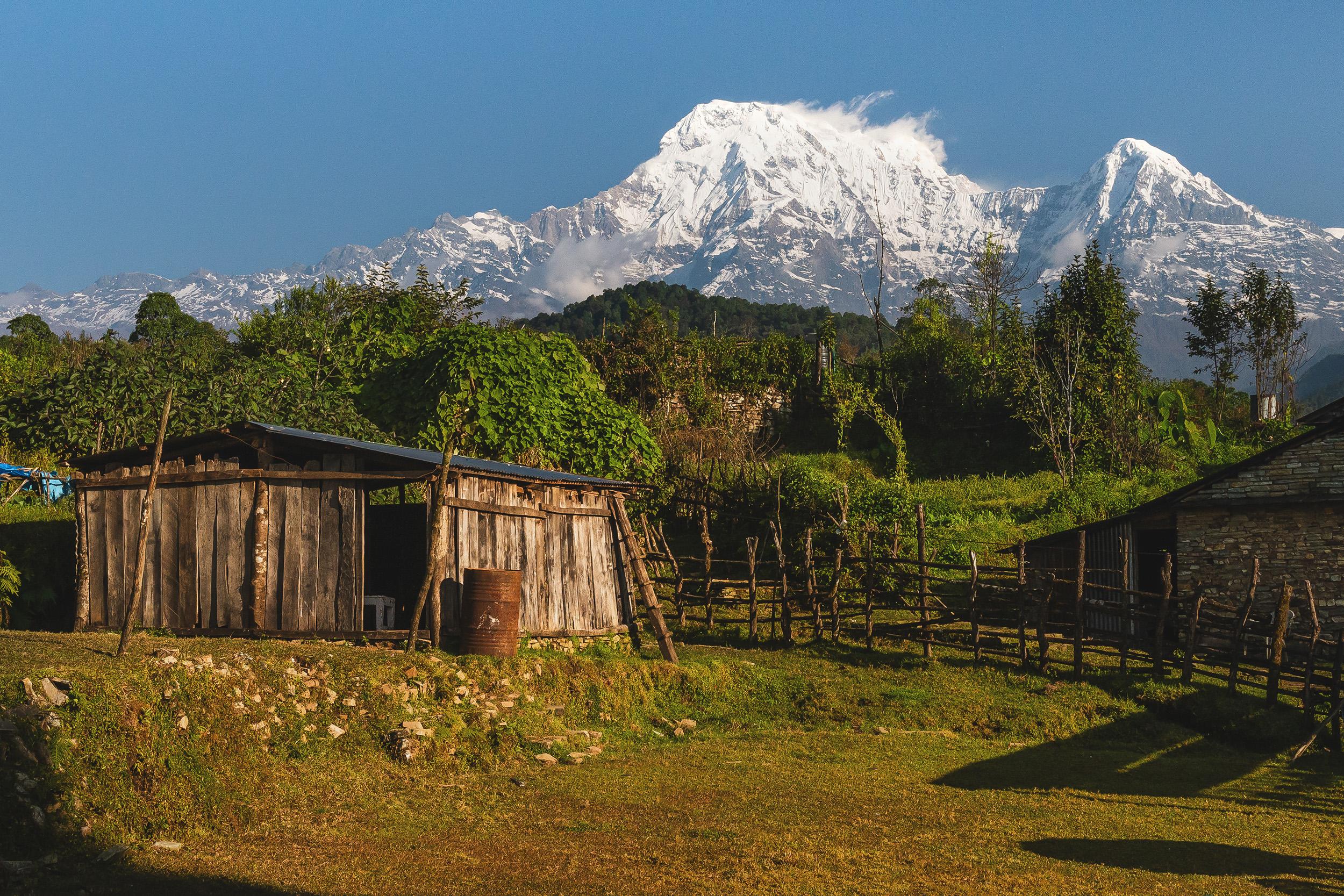Himalaya desde Pothana