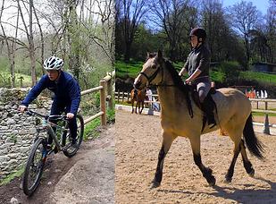 Equitation & Multisport.png