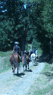Equitation Loisirs ( CRV)