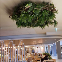 Suspended Ceiling Greenery feature