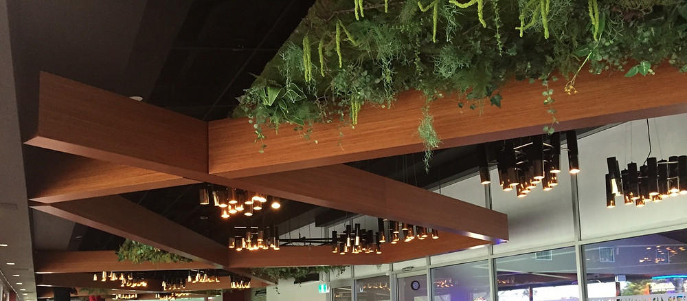 faux plants for hotels, clubs, restaurants and offices