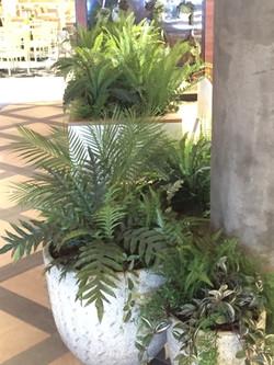 pots of greenery