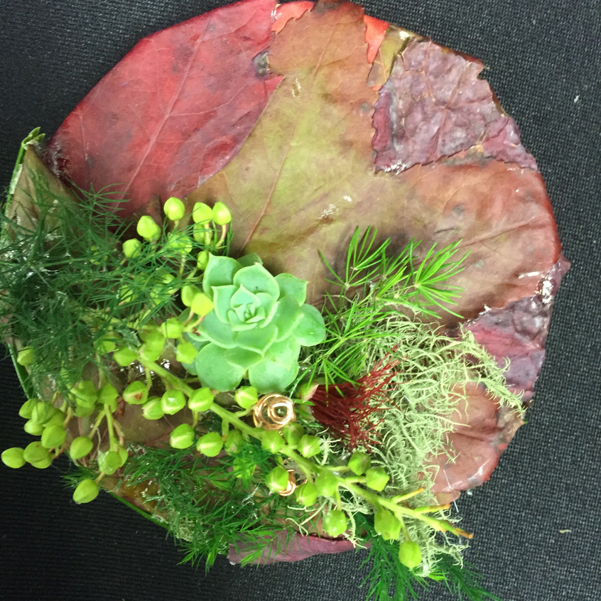 contemporary button hole / boutonniere with autumn leaf base and succulents
