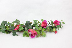 mixed vine of ivy and bougainvillea