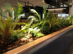 tropical planting in raised planter - Hospitality