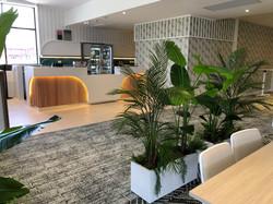 Screen planting Hospitality