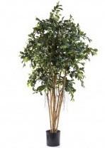 Artificial Faux Ficus Tree very lifelike