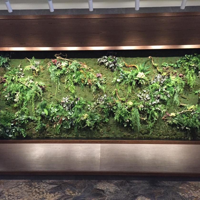 Greenwall on moss - Soul Design