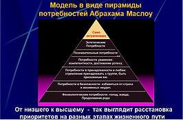 Психологическая структура человека