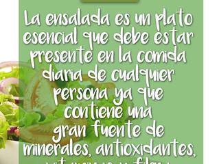 La Ensalada fuente de minerales, antioxidantes, vitaminas y fibra.