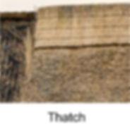 thatch 2.jpg