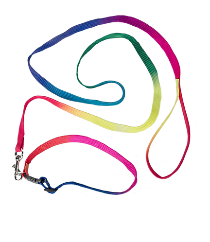 Rainbow Collar and Lead