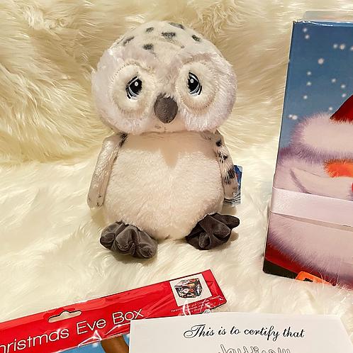 Owl Christmas Eve Box