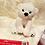 Thumbnail: Polar Bear Christmas Eve Box