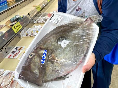 旬の魚手帳 マトウダイ