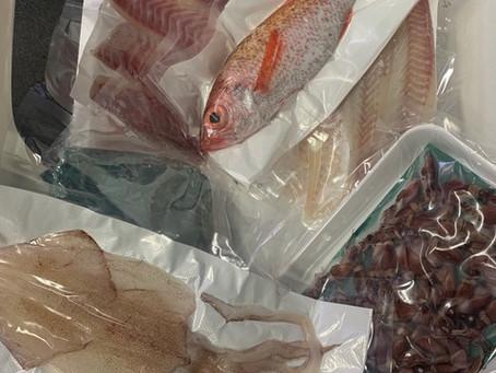 長浜鮮魚市場の刺身セット