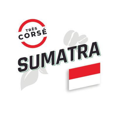 SUMATRA, Décaféiné, Torréfaction Noire