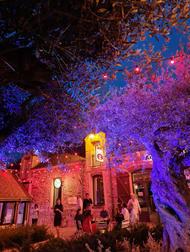 Jeux de lumières au Village de Sully