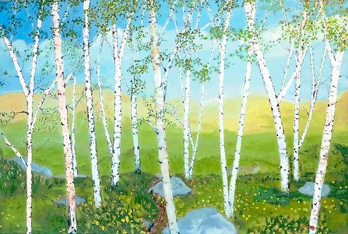 Rocky Ridge Birches