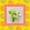 Thumbnail: Lime, Basil & Mandarin Wax Melts