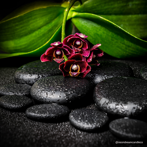 Orchid Noir Wax Melts