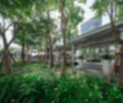 central_chonburi_S_072.jpg