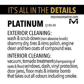 Car wash Detail 4 Platinum.jpg