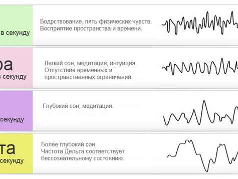 Электрофизиология головного мозга