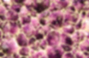 Texture from natural amethyst.jpg