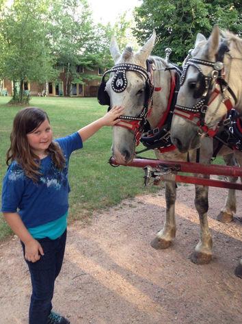 petting the wagon horses.jpg
