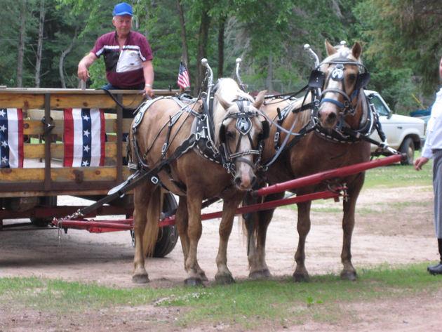 pulling the wagon.jpg